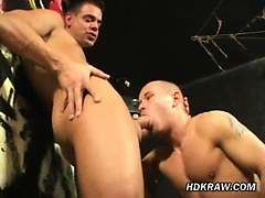 After You Strip, Sit On My Cock!