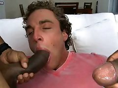 Horny gay sucking two black cocks
